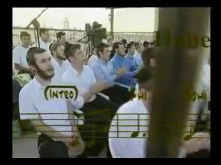Mordechai Ben David �������� ��� �����